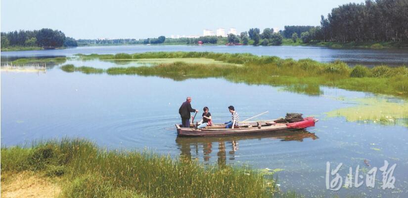 淤泥的定义河道清淤许可证廊坊实行了北运河河流整饬